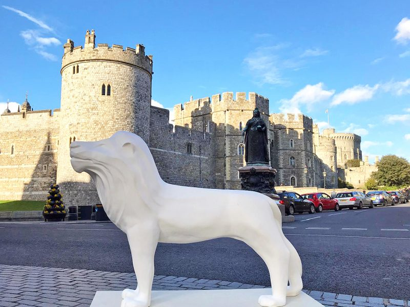 Leo's day out in Windsor