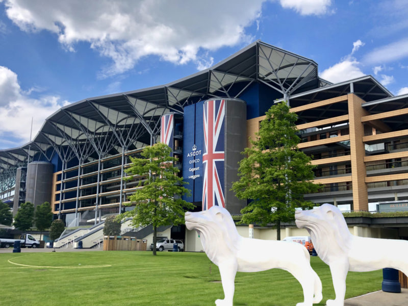 Lions head to Ascot Racecourse for Thames Valley Ascot Expo
